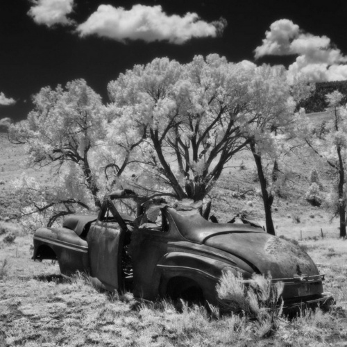 """Cody Brothers's photograph """"End of the Road, Elizabethtown, NM"""""""